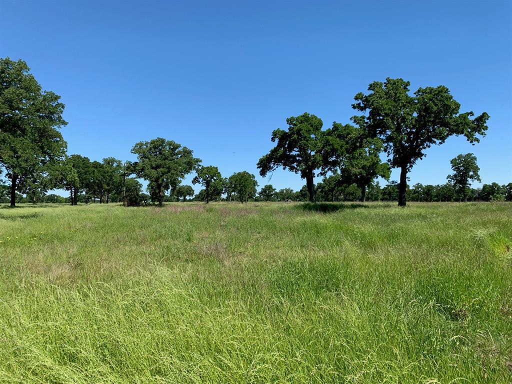 550 Hilltop  Road, Elm Mott, Texas 76640 - Acquisto Real Estate best frisco realtor Amy Gasperini 1031 exchange expert