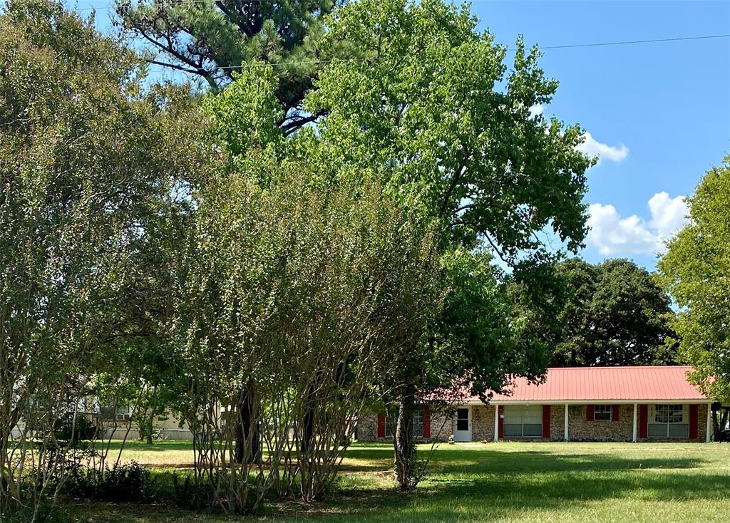 213 Main  Donie, Texas 75838 - Acquisto Real Estate best frisco realtor Amy Gasperini 1031 exchange expert