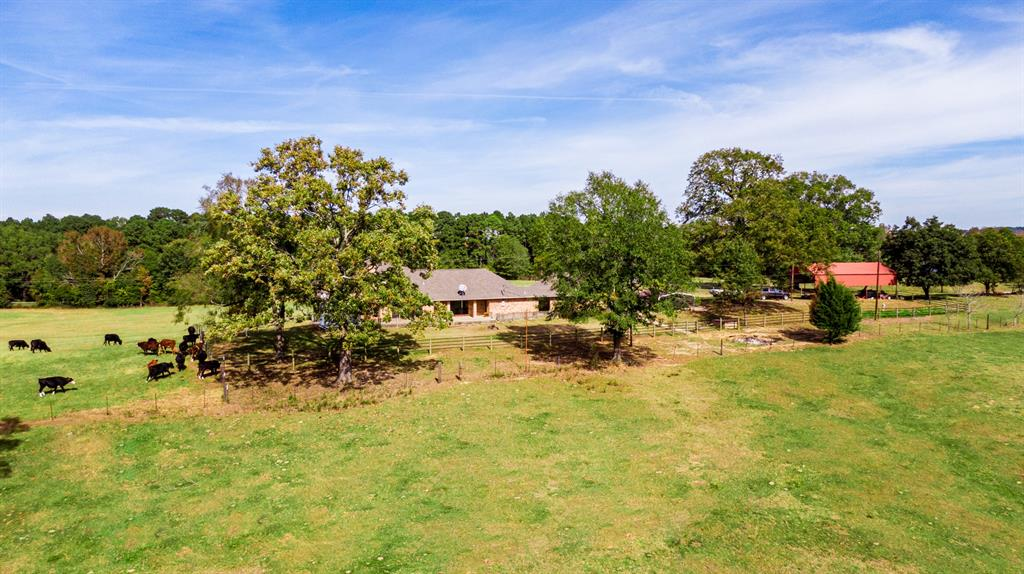 4650 Hwy 144  Daingerfield, Texas 75638 - acquisto real estate best highland park realtor amy gasperini fast real estate service