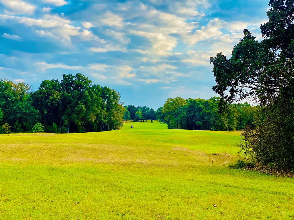 Lot 18A Oakmont  Court, Gordonville, Texas 76245 - acquisto real estate best real estate company in frisco texas real estate showings