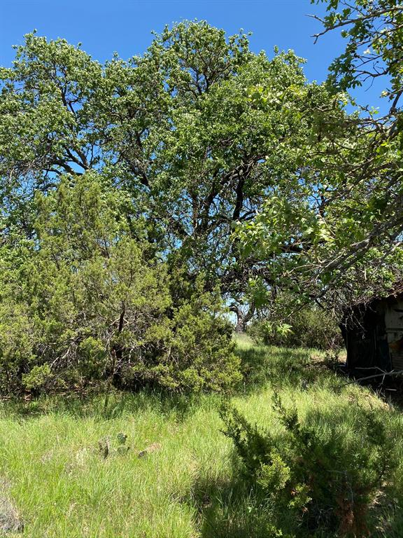 644Acre Hwy 70  Blackwell, Texas 79506 - Acquisto Real Estate best frisco realtor Amy Gasperini 1031 exchange expert