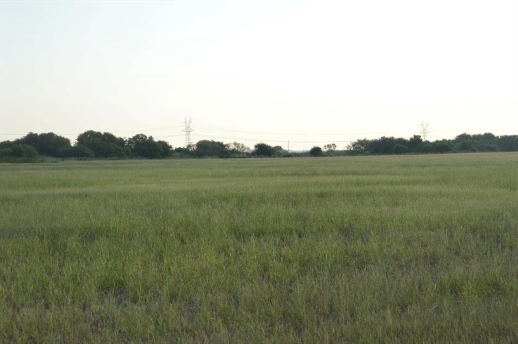Lot 50 FM 1954  Holliday, Texas 76366 - Acquisto Real Estate best frisco realtor Amy Gasperini 1031 exchange expert