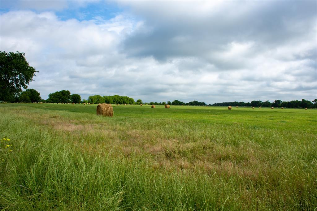 Lot 9 US Highway 69  Point, Texas 75472 - acquisto real estate best designer and realtor hannah ewing kind realtor