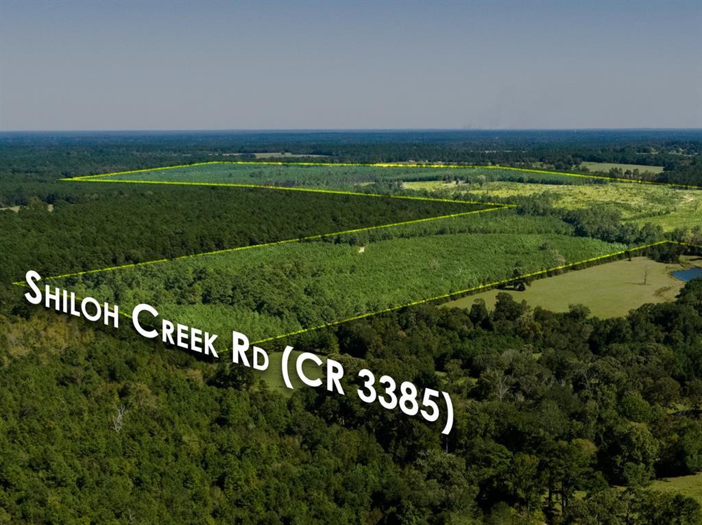 0000 CR 3385  Crockett, Texas 75835 - Acquisto Real Estate best frisco realtor Amy Gasperini 1031 exchange expert