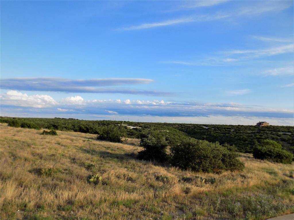 Cypress Point  Court, Possum Kingdom Lake, Texas 76449 - acquisto real estate best allen realtor kim miller hunters creek expert