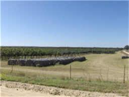 2909 County Road 304  Comanche, Texas 76442 - Acquisto Real Estate best frisco realtor Amy Gasperini 1031 exchange expert