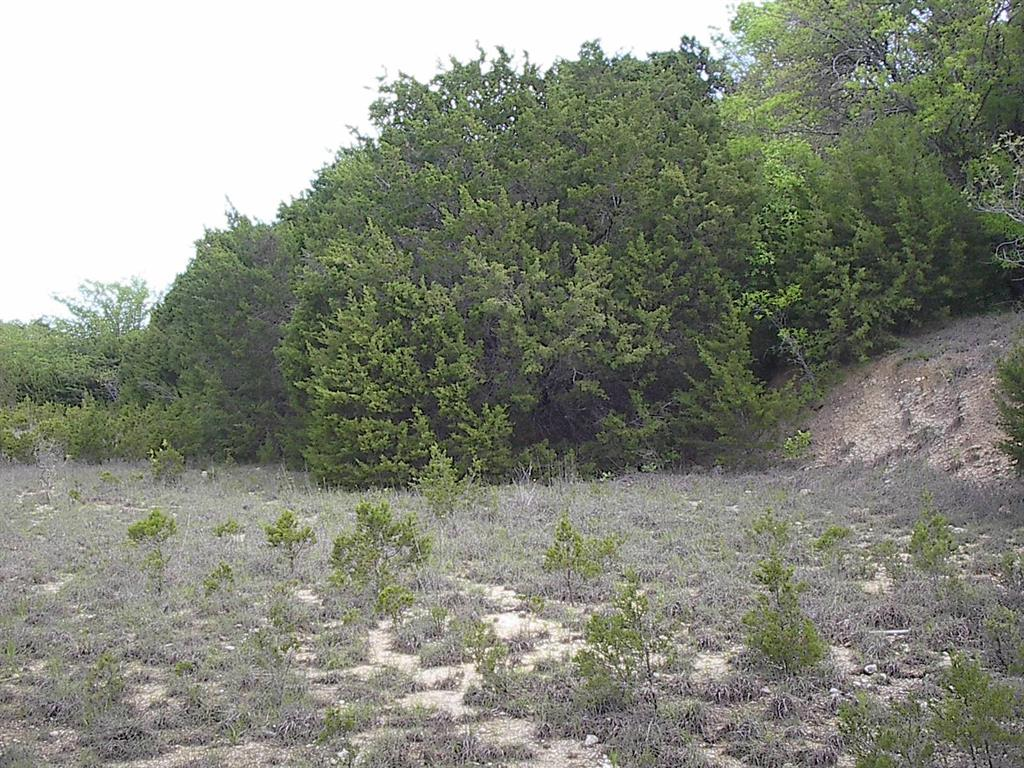 227 Palamino  Loop, Whitney, Texas 76692 - acquisto real estate best allen realtor kim miller hunters creek expert