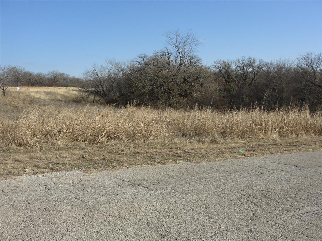 TBD A Lee Rd  Mineral Wells, Texas 76067 - Acquisto Real Estate best frisco realtor Amy Gasperini 1031 exchange expert