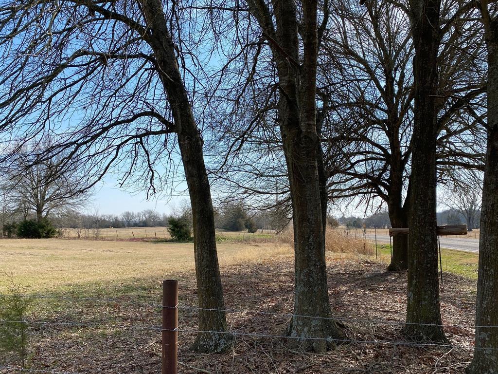 15114 Fm 100  Honey Grove, Texas 75446 - Acquisto Real Estate best frisco realtor Amy Gasperini 1031 exchange expert