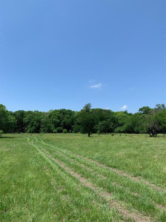 10943 County Road 670  Blue Ridge, Texas 75424 - acquisto real estate best allen realtor kim miller hunters creek expert