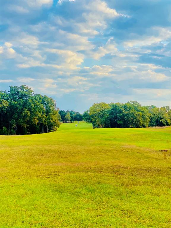 Lot 18A Oakmont  Court, Gordonville, Texas 76245 - acquisto real estate best listing listing agent in texas shana acquisto rich person realtor