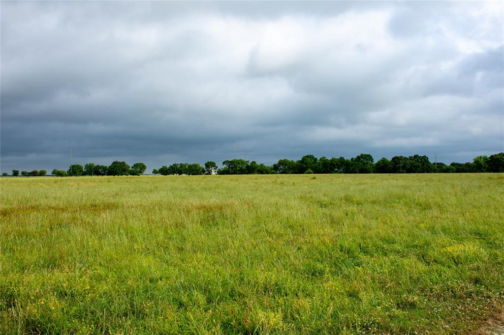 Lot 9 US Highway 69  Point, Texas 75472 - acquisto real estate smartest realtor in america shana acquisto