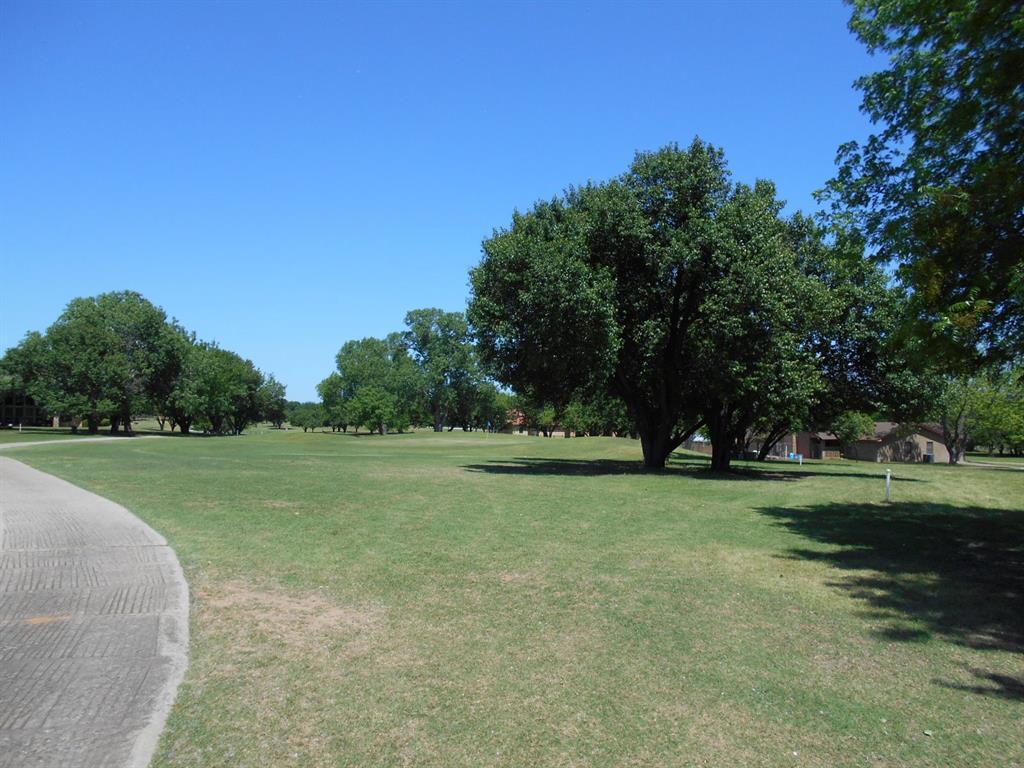Palmer  Drive, Comanche, Texas 76442 - Acquisto Real Estate best frisco realtor Amy Gasperini 1031 exchange expert