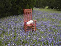 4104 Whitecrest  Drive, Whitney, Texas 76692 - Acquisto Real Estate best mckinney realtor hannah ewing stonebridge ranch expert