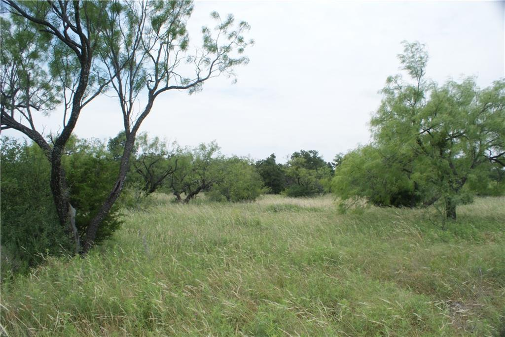 F1 Stagecoach  Trail, Gordon, Texas 76453 - Acquisto Real Estate best frisco realtor Amy Gasperini 1031 exchange expert