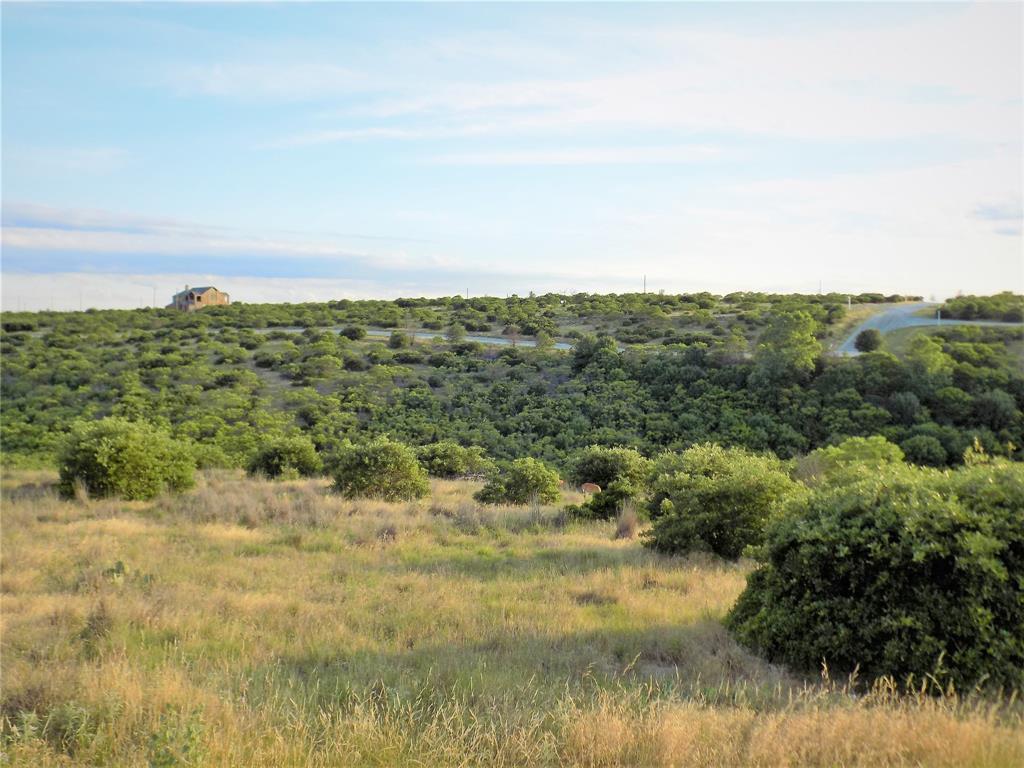 Cypress Point  Court, Possum Kingdom Lake, Texas 76449 - Acquisto Real Estate best mckinney realtor hannah ewing stonebridge ranch expert