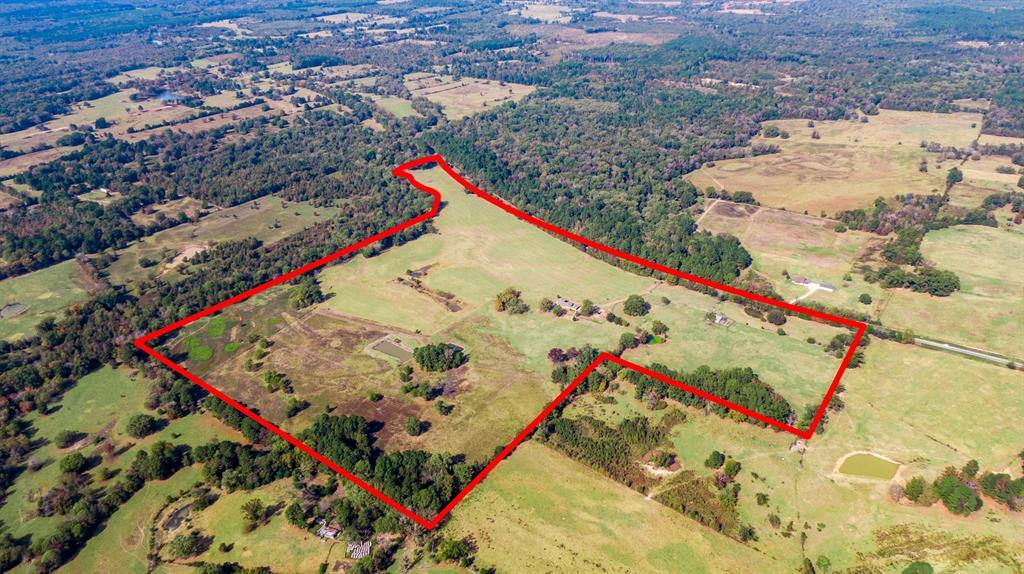 4650 Hwy-144  Daingerfield, Texas 75638 - acquisto real estate best negotiating realtor linda miller declutter realtor