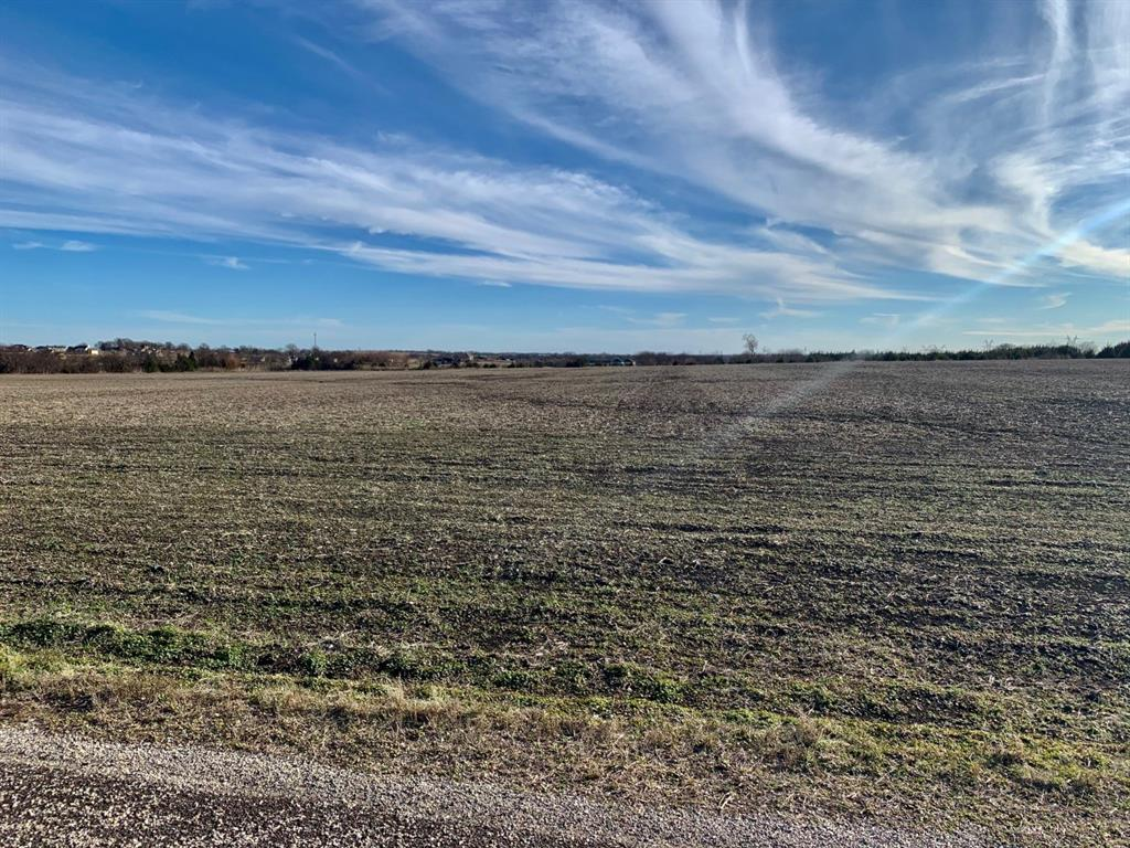 121ac County Road 175  Celina, Texas 75009 - acquisto real estate best listing agent in the nation shana acquisto estate realtor