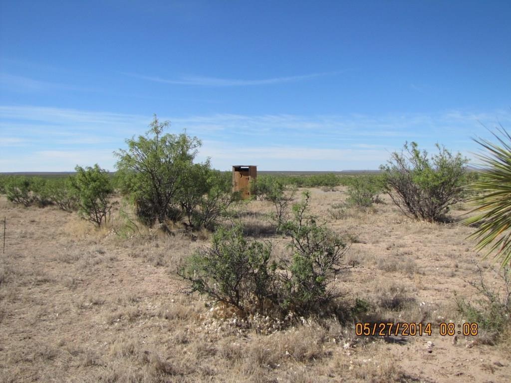 100 Rayburn  Run, Sierra Blanca, Texas 79851 - Acquisto Real Estate best frisco realtor Amy Gasperini 1031 exchange expert