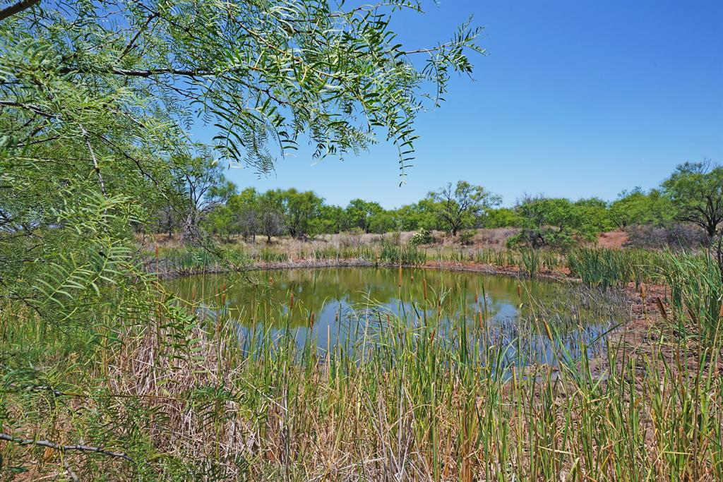 544 CR 277  McCaulley, Texas 79534 - Acquisto Real Estate best frisco realtor Amy Gasperini 1031 exchange expert