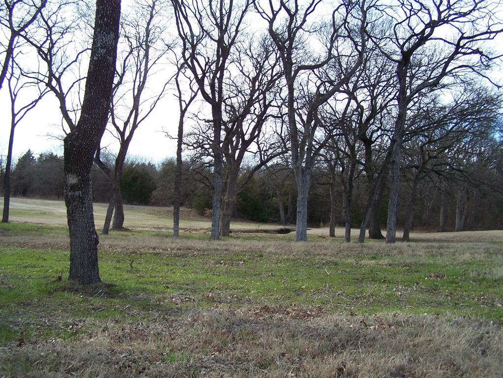 215 Bent Oak  Drive, Pottsboro, Texas 75076 - Acquisto Real Estate best frisco realtor Amy Gasperini 1031 exchange expert