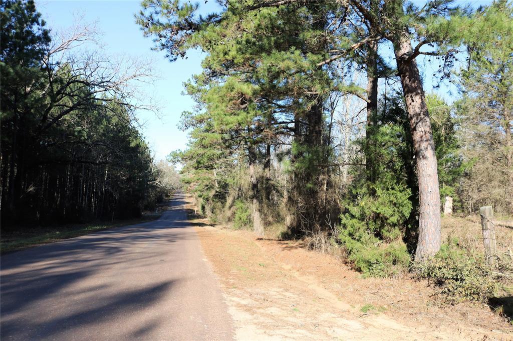 0 TBD Davidson Road 35.667 A  Harleton, Texas 75640 - Acquisto Real Estate best frisco realtor Amy Gasperini 1031 exchange expert