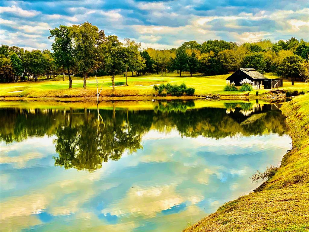 Lot 18A Oakmont  Court, Gordonville, Texas 76245 - acquisto real estate best listing agent in the nation shana acquisto estate realtor