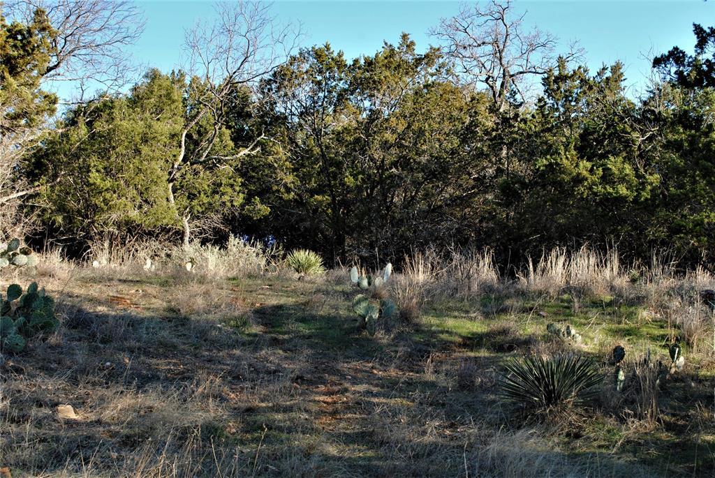 313 CR 142  Burnet, Texas 78611 - Acquisto Real Estate best frisco realtor Amy Gasperini 1031 exchange expert
