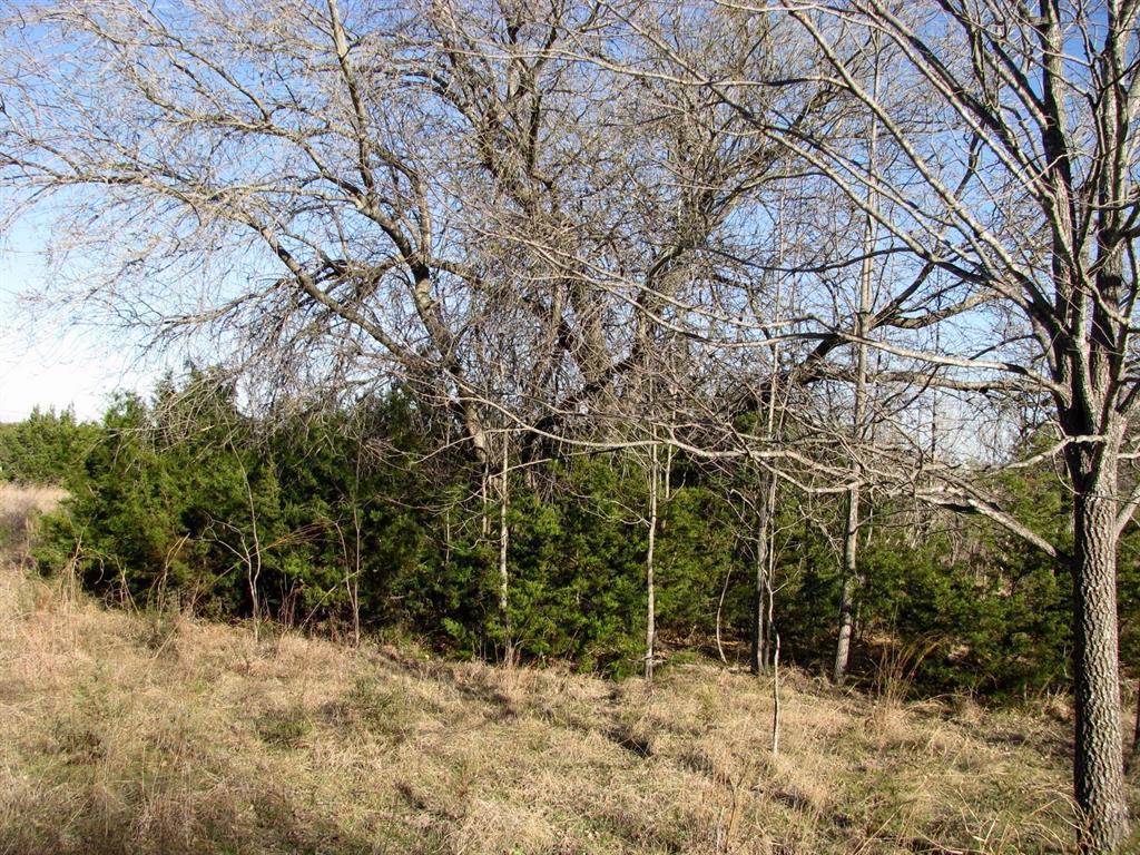 913 Kubitz  Road, Copperas Cove, Texas 76522 - Acquisto Real Estate best frisco realtor Amy Gasperini 1031 exchange expert