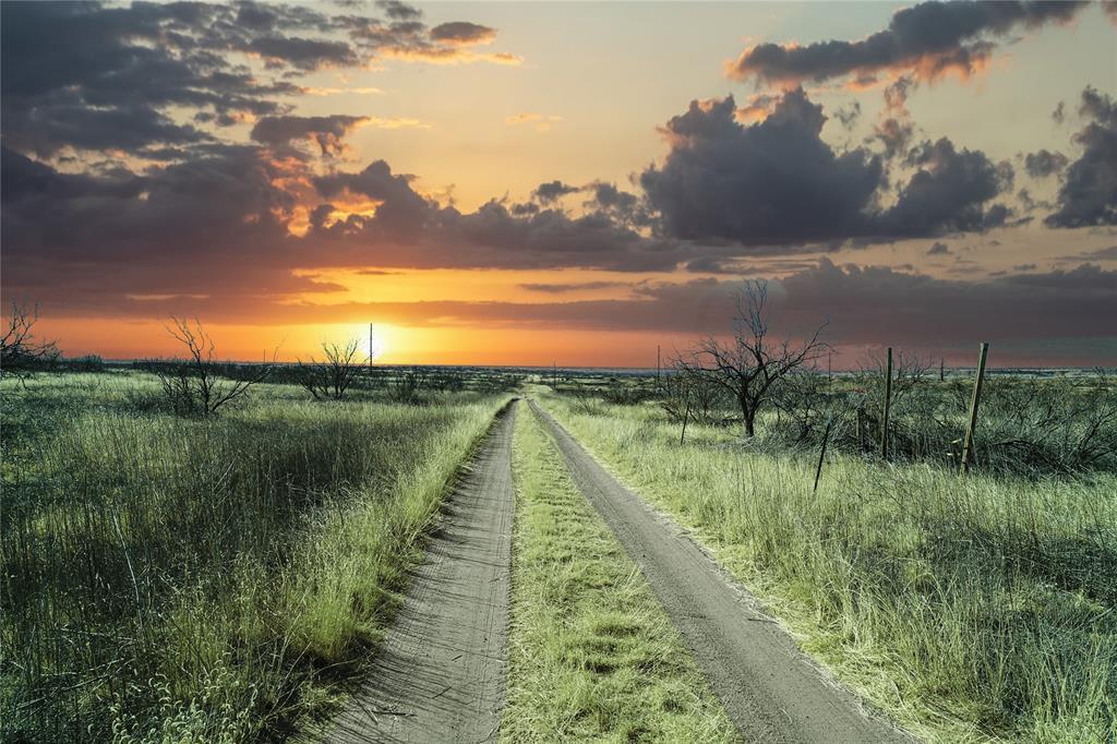 Ferns  Road, Amarillo, Texas 79012 - Acquisto Real Estate best frisco realtor Amy Gasperini 1031 exchange expert