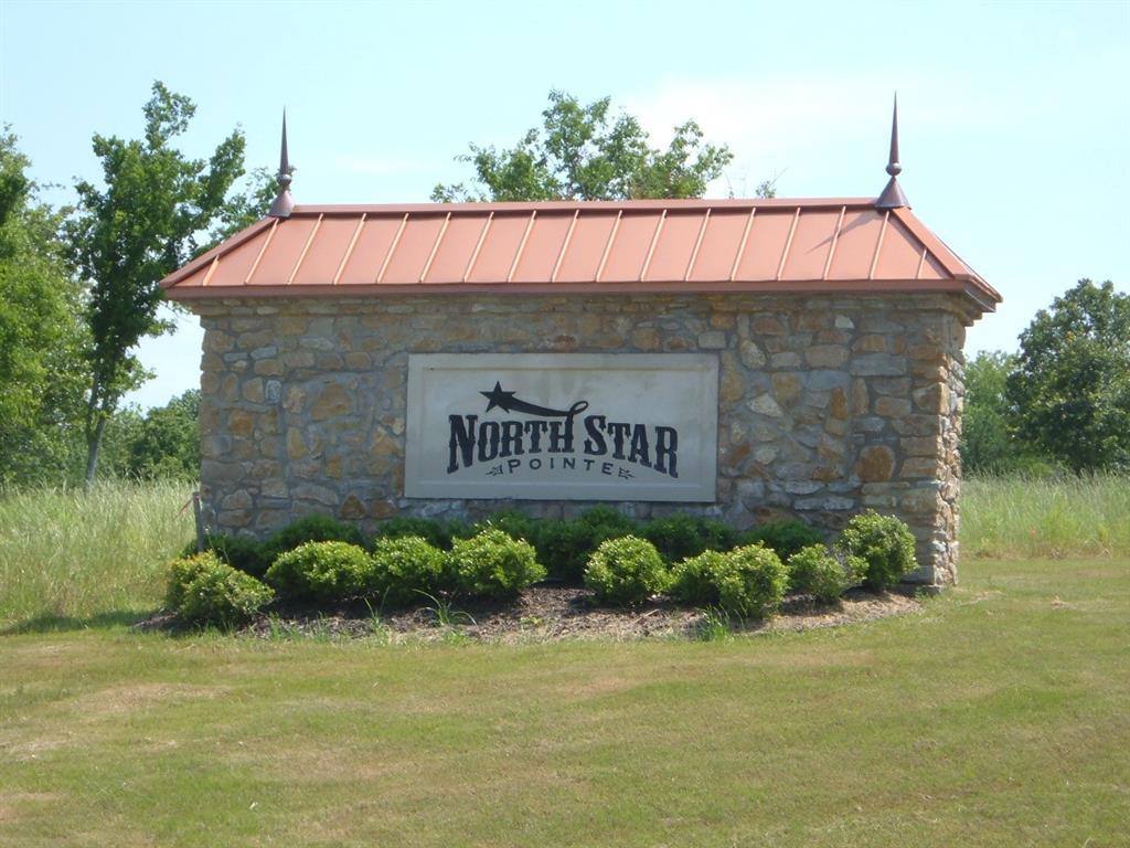 Lot 276 Vista Pointe  Drive, Chico, Texas 76431 - Acquisto Real Estate best frisco realtor Amy Gasperini 1031 exchange expert