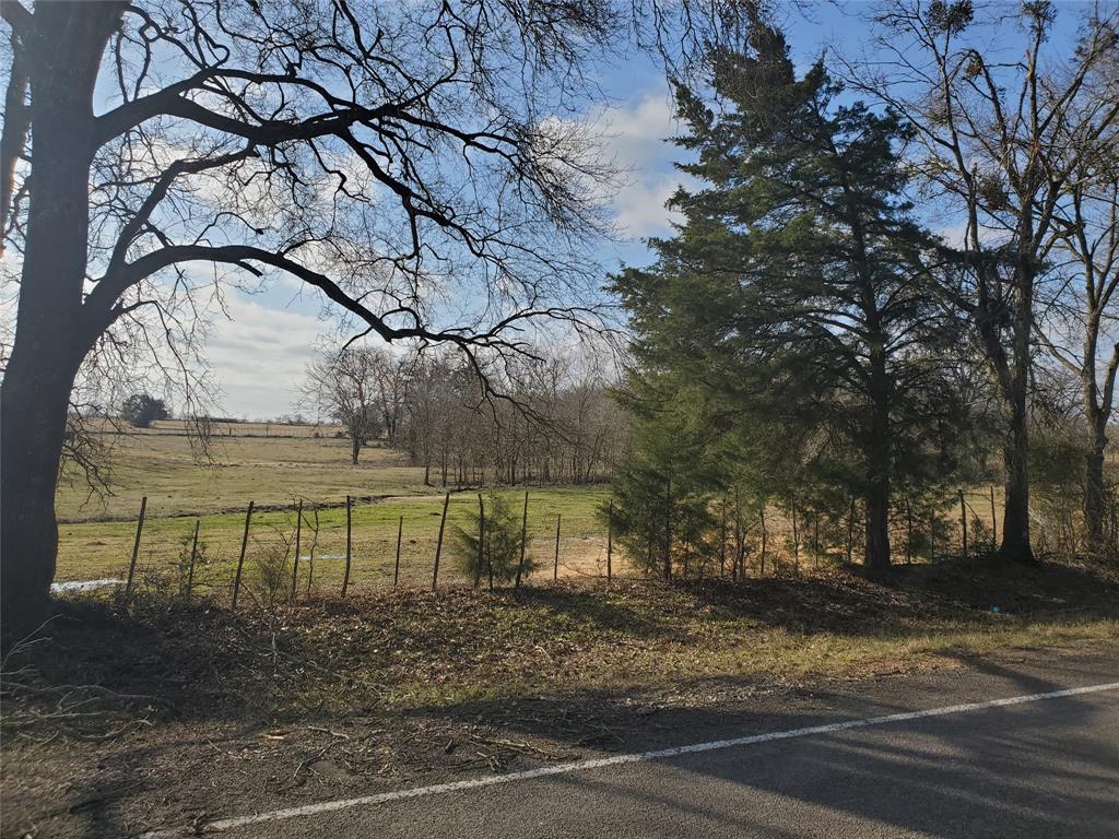815 Fm 489  Donie, Texas 75838 - Acquisto Real Estate best frisco realtor Amy Gasperini 1031 exchange expert