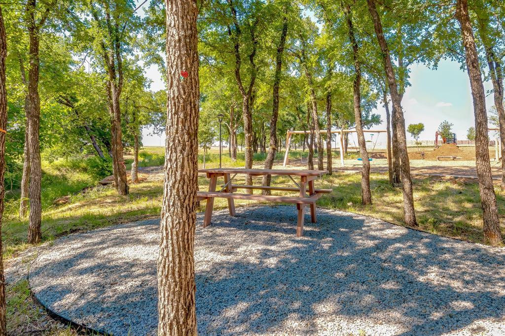 356 Moonvine  Drive, Little Elm, Texas 75068 - acquisto real estate best new home sales realtor linda miller executor real estate