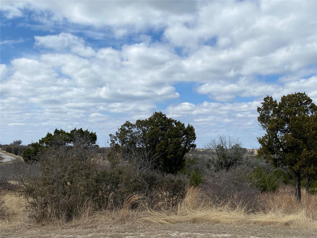 520 Baltrusol  Drive, Graford, Texas 76449 - Acquisto Real Estate best frisco realtor Amy Gasperini 1031 exchange expert