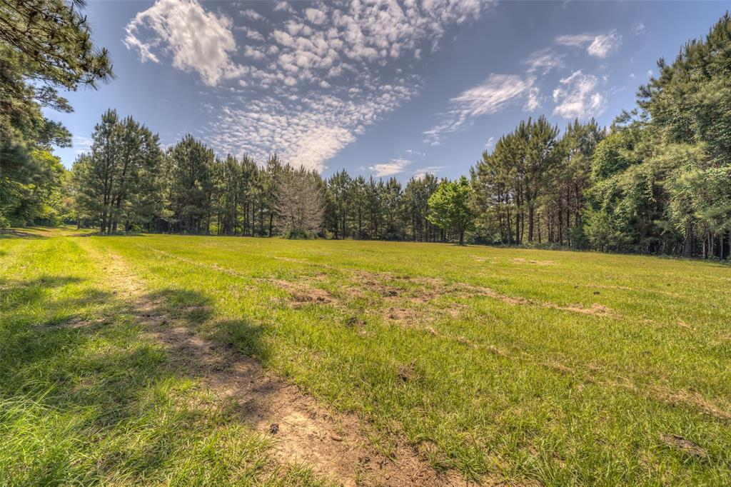 TBD State Highway 21  Grapeland, Texas 75844 - Acquisto Real Estate best frisco realtor Amy Gasperini 1031 exchange expert
