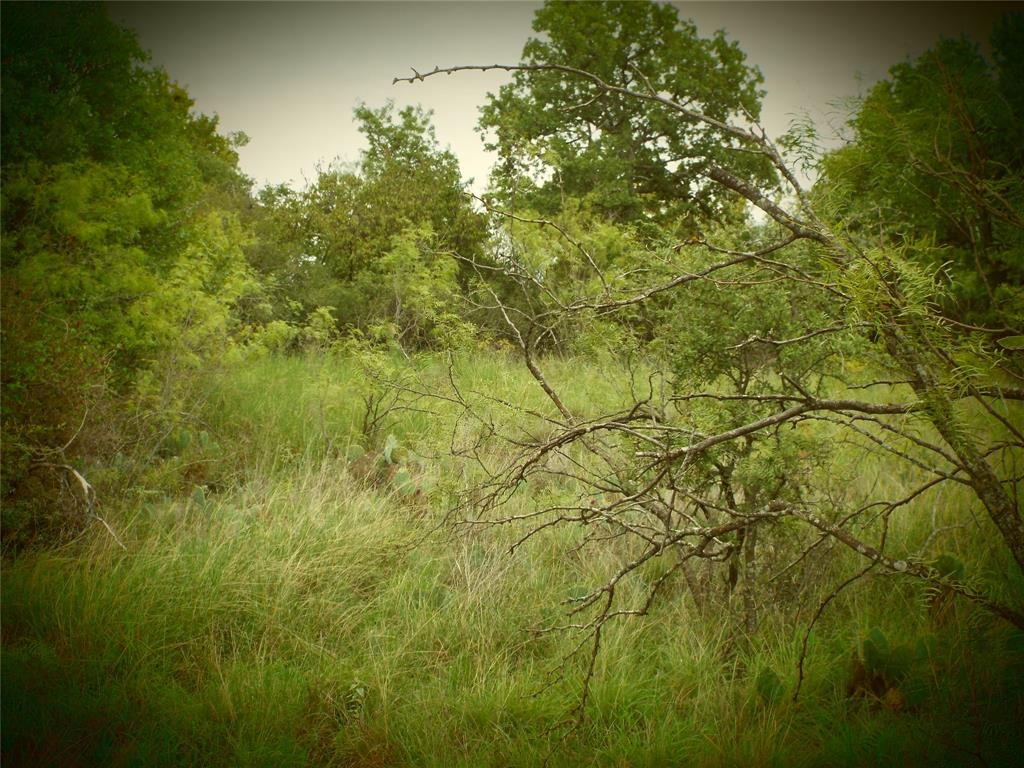 LOT 96 FEATHERBAY BLVD  Lake Brownwood, Texas 76801 - Acquisto Real Estate best frisco realtor Amy Gasperini 1031 exchange expert