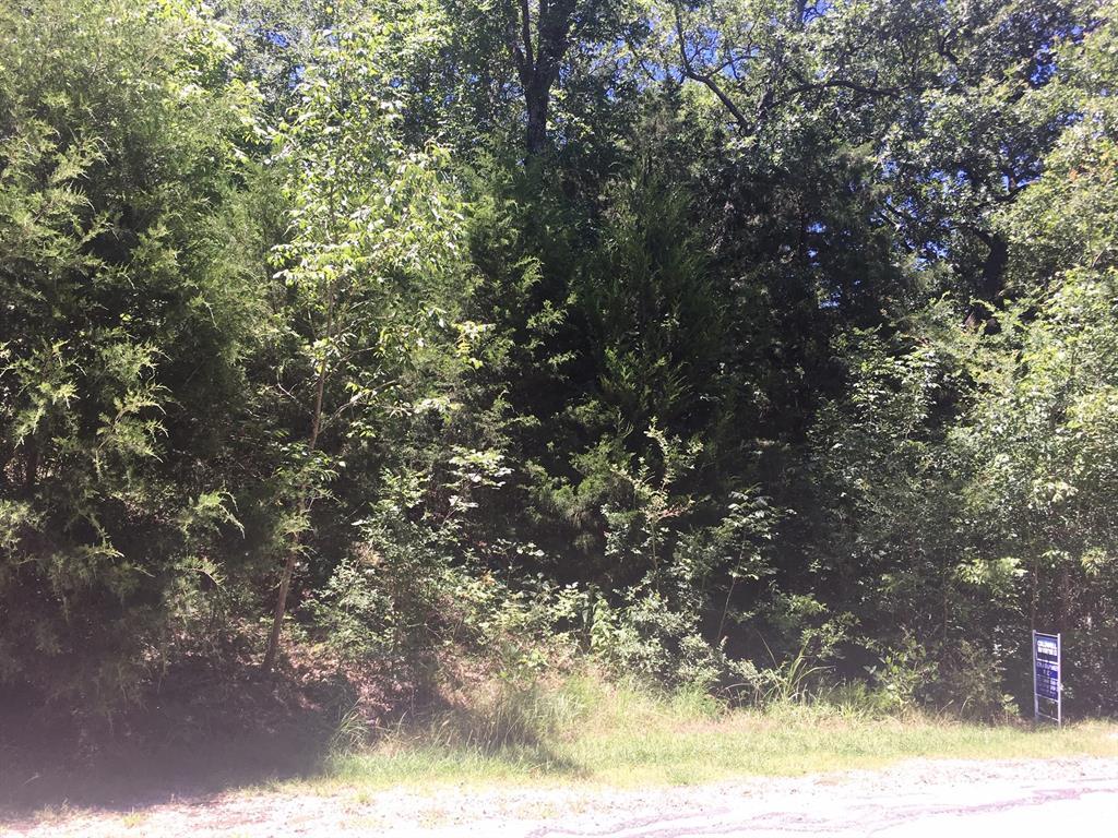 Lot 34 Meandering  Way, Corsicana, Texas 75109 - Acquisto Real Estate best frisco realtor Amy Gasperini 1031 exchange expert
