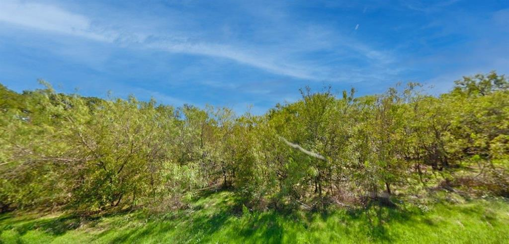 Lot 6 CR 3048A  Mildred, Texas 75109 - Acquisto Real Estate best frisco realtor Amy Gasperini 1031 exchange expert