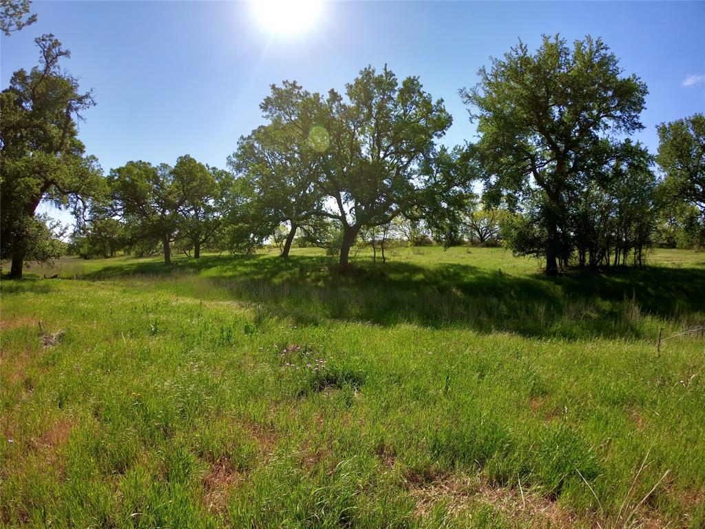 18301 County Road 214  Brookesmith, Texas 76827 - Acquisto Real Estate best frisco realtor Amy Gasperini 1031 exchange expert