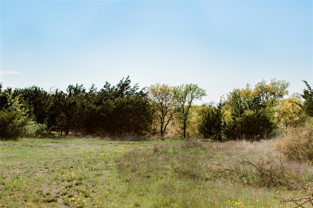 TBD- 88 Stagecoach  Trail, Weatherford, Texas 76085 - acquisto real estate best the colony realtor linda miller the bridges real estate