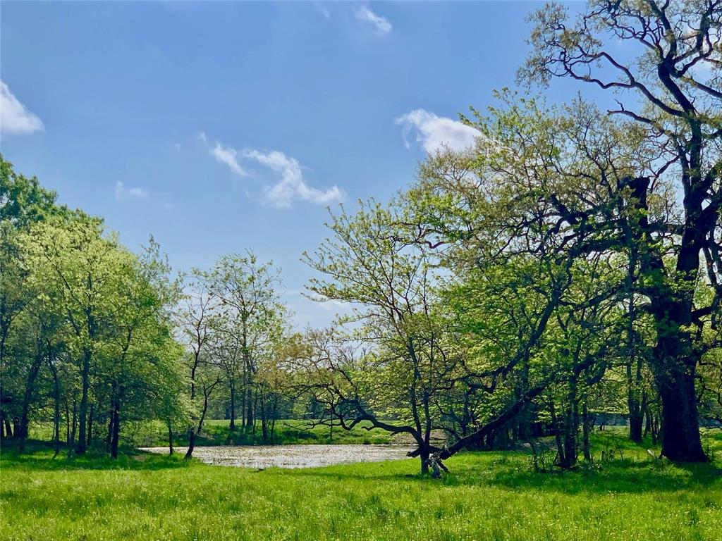 TBD Farm Road 3389  Highway, Sulphur Springs, Texas 75482 - Acquisto Real Estate best frisco realtor Amy Gasperini 1031 exchange expert