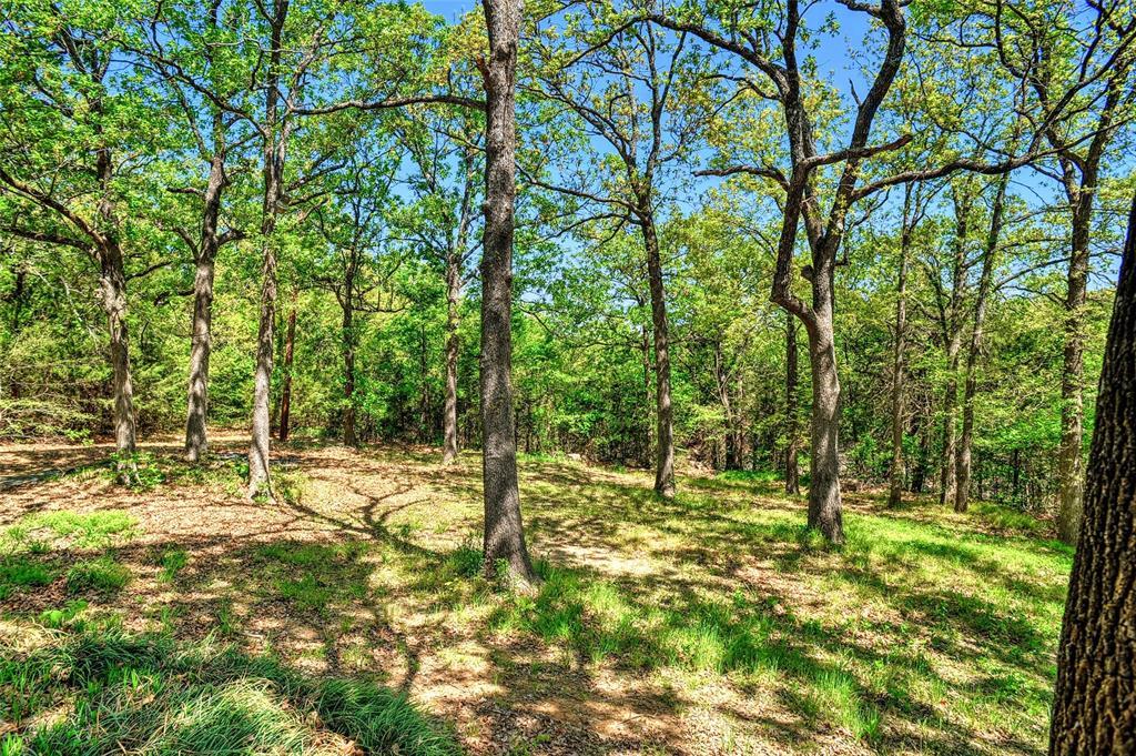 27 Preston Oaks  Drive, Pottsboro, Texas 75076 - acquisto real estate smartest realtor in america shana acquisto