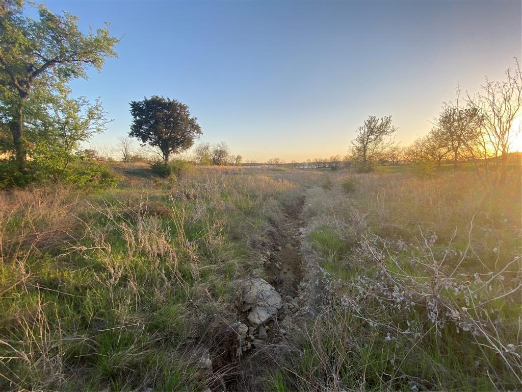 Lot 932 Frog Branch  Court, Possum Kingdom Lake, Texas 76449 - acquisto real estate best prosper realtor susan cancemi windfarms realtor