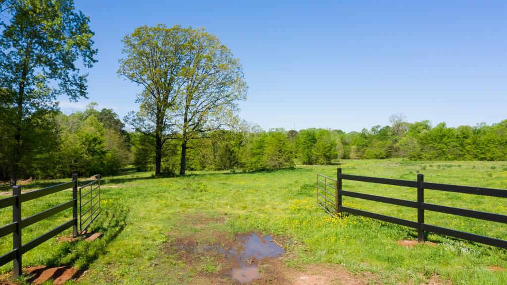 TBD CR 4315  Cookville, Texas 75558 - Acquisto Real Estate best frisco realtor Amy Gasperini 1031 exchange expert