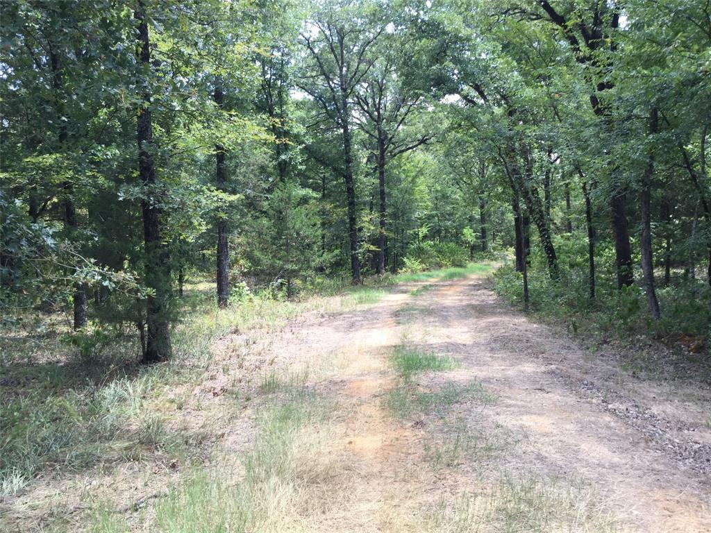 County Road 2404  Kemp, Texas 75143 - acquisto real estate best allen realtor kim miller hunters creek expert
