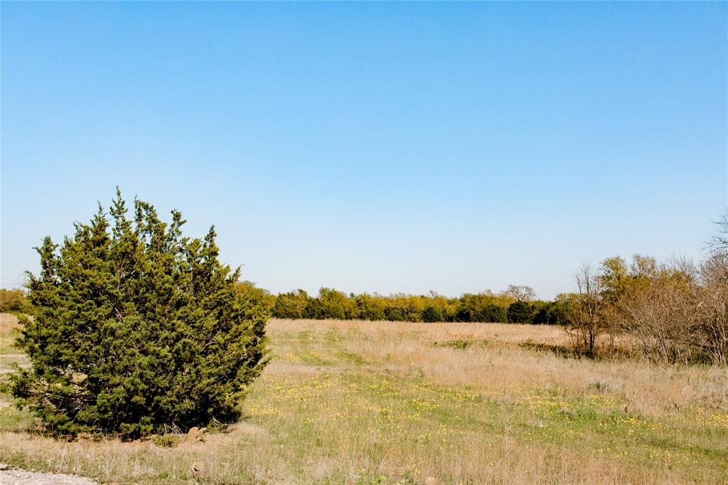 TBD- 88 Stagecoach  Trail, Weatherford, Texas 76085 - acquisto real estate best listing listing agent in texas shana acquisto rich person realtor