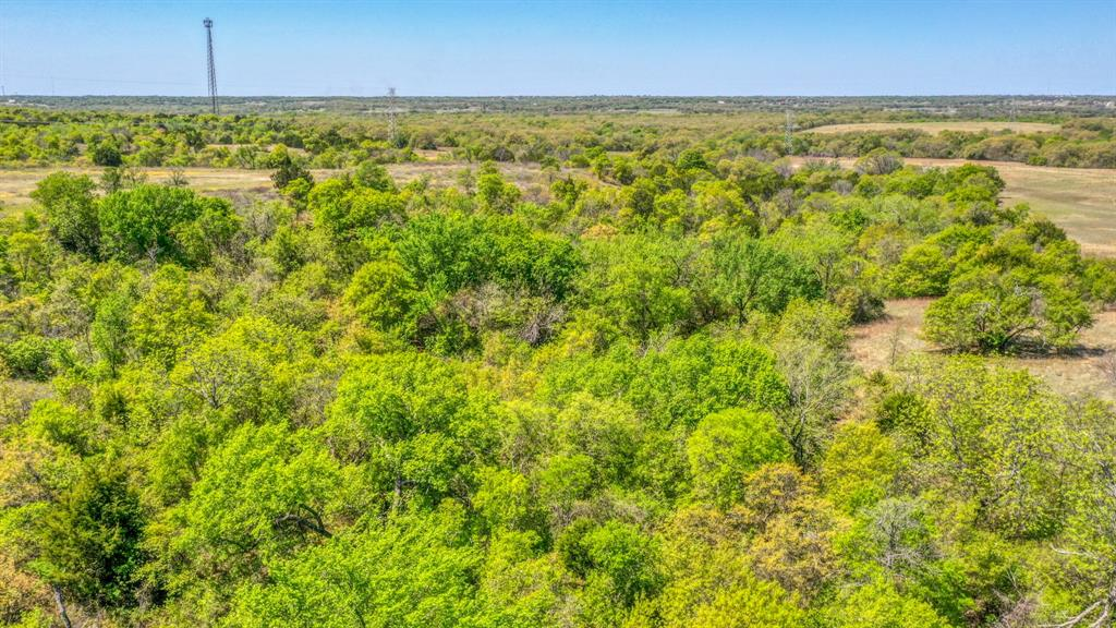 TBD 60 Bosal  Lane, Weatherford, Texas 76088 - acquisto real estate nicest realtor in america shana acquisto