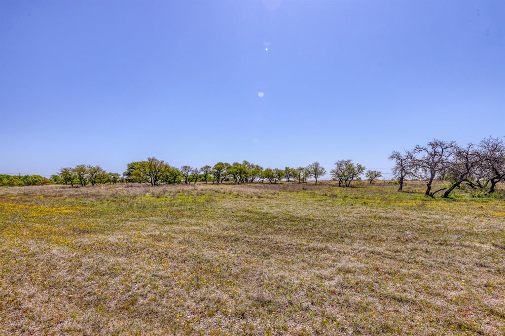 TBD 60 Bosal  Lane, Weatherford, Texas 76088 - acquisto real estate best listing listing agent in texas shana acquisto rich person realtor