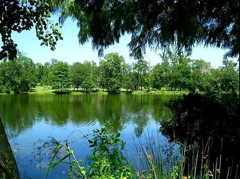 14701 Topaz  Court, Willis, Texas 77378 - Acquisto Real Estate best frisco realtor Amy Gasperini 1031 exchange expert