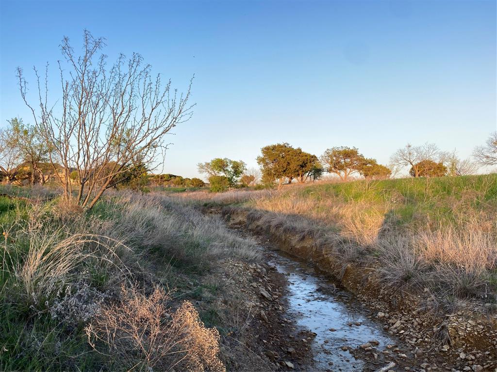 Lot 932 Frog Branch  Court, Possum Kingdom Lake, Texas 76449 - acquisto real estate best celina realtor logan lawrence best dressed realtor